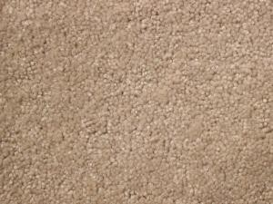 What kind of carpet should I buy? I have purchased XYZ carpet, what do you think?